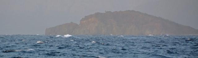 bølgerok